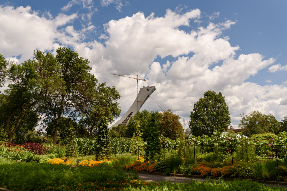 View of the Olympic stadium from the Montreal botanical garden