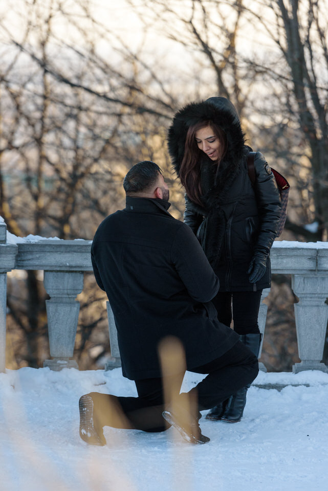 Winter proposal in Montreal