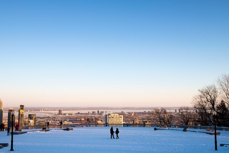 Winter proposal on Mount-Royal