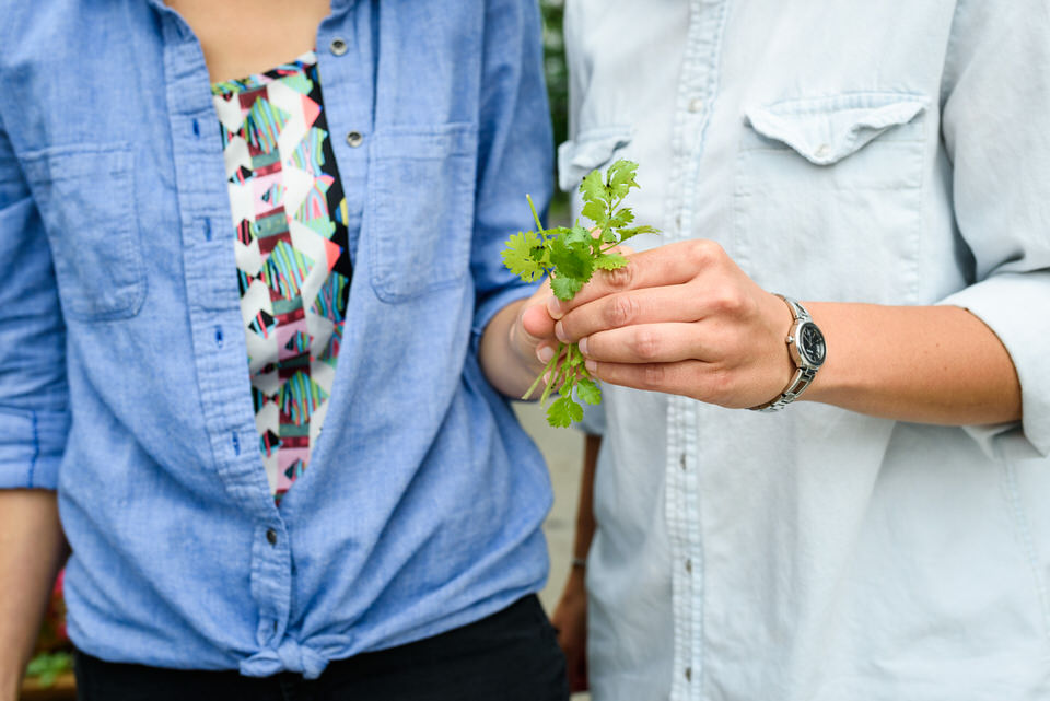 Gathering herbs from community garden in Little Italy