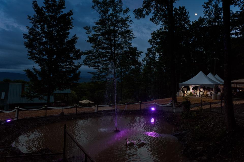 Bright fountain at night
