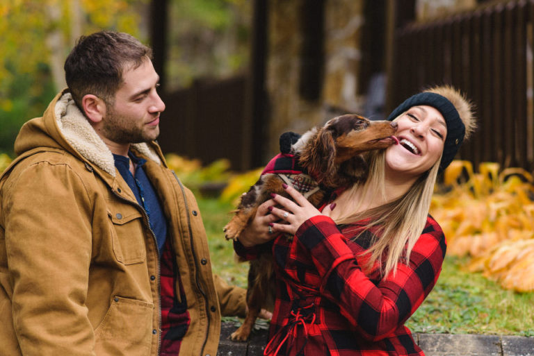 Fall engagement photo shoot with their dog Remi