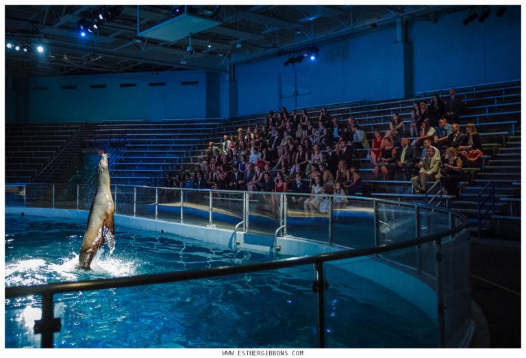 Same-sex wedding extravaganza at an aquarium