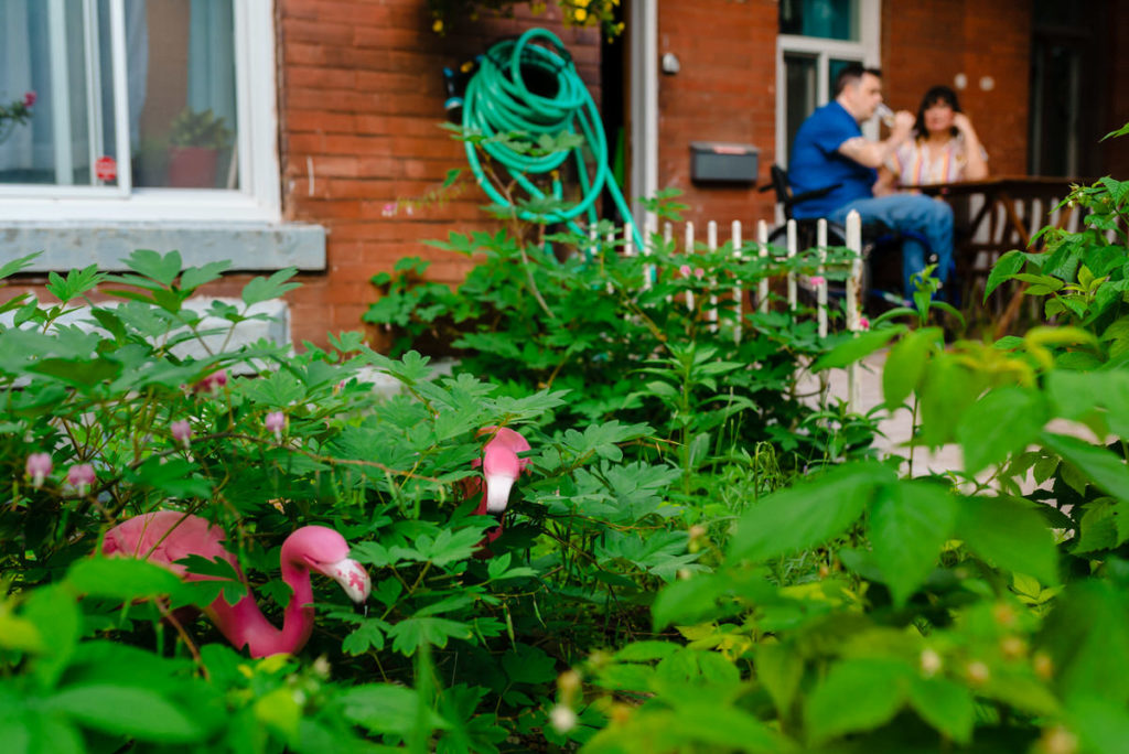 Yard flamingos in front garden with engaged couple in the background